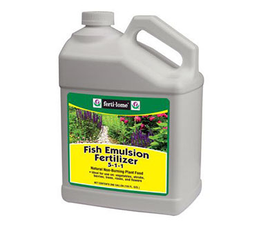 the truth about using fish emulsion fertilizer for plants