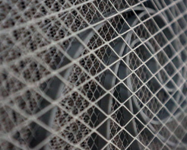 How to Choose the Best Bug Zapper with Helpful Reviews