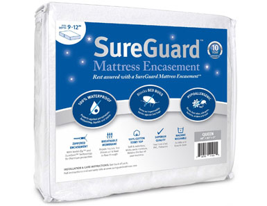 queen sureguard mattress encasement bed bug proof