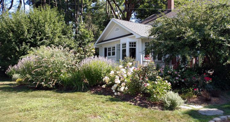 using beneficial nematodes in the garden
